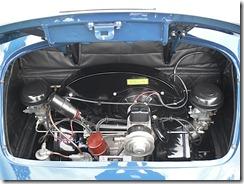 SDC12460